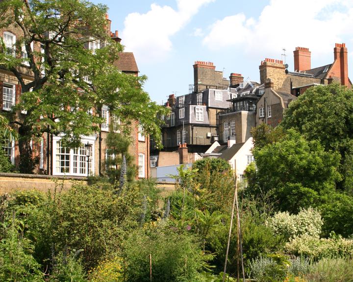 You are browsing images from the article: Chelsea Physic Garden - drugi najstarszy ogród botaniczny w Wielkiej Brytanii