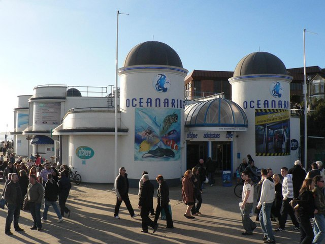 You are browsing images from the article: The Bournemouth Aquarium - Oceanarium