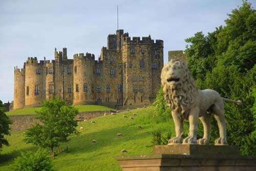 You are browsing images from the article: Zamek Alnwick Castle - 'Windsor Północy'