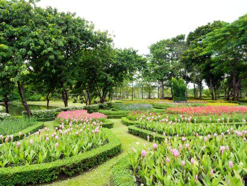 Ogrody botaniczne i tematyczne w Anglii