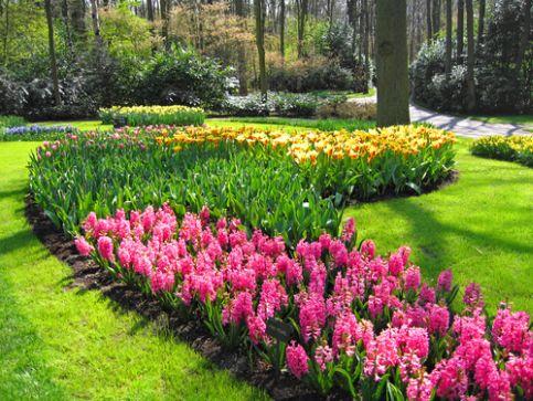 Ogrody botaniczne i tematyczne w Szkocji