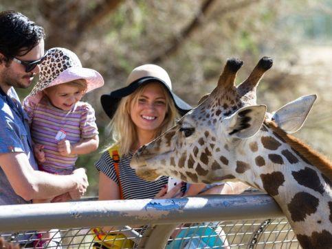 Zoo i ogrody zoologiczne w Szkocji