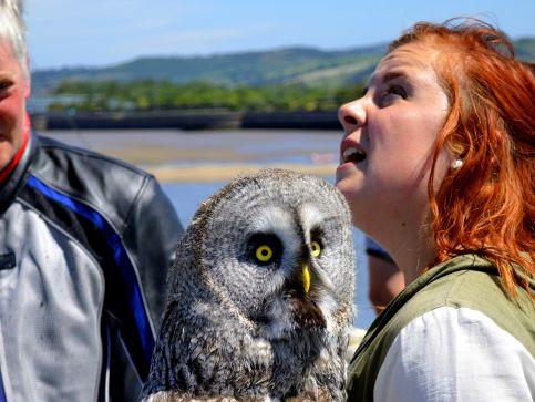 Rezerwaty przyrody w Walii